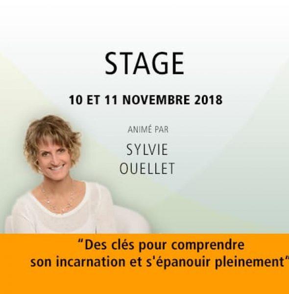 Sylvie Ouellet : «Des clés pour comprendre son incarnation et s'épanouir pleinement»